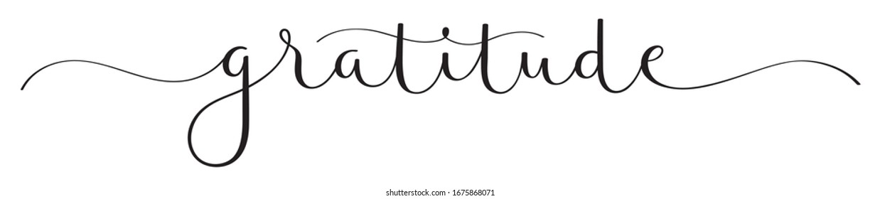 GRATITUDE black vector brush calligraphy banner with swashes