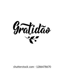 Gratitude. Translation from portuguese - Gratitude. Lettering. Hand drawn vector illustration. element for flyers, banner, t-shirt and posters Modern calligraphy. Gratidao.