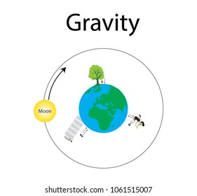 Gravity and gravity between the Earth and the Moon, Apple tree, Tower, Human.