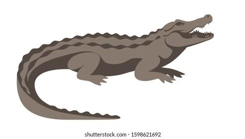 gray big alligator lies open mouth