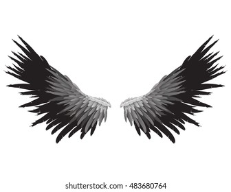 Gray and black colored wings on white background, vector illustration