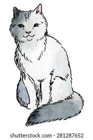 Gray cat - hand drawn vector watercolor illustration