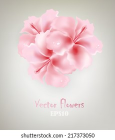 Gray Design Background With Pink Flowers