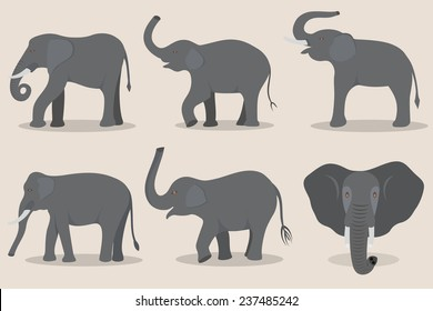 Gray elephant set