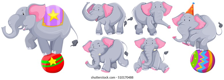 Gray elephants in different actions illustration