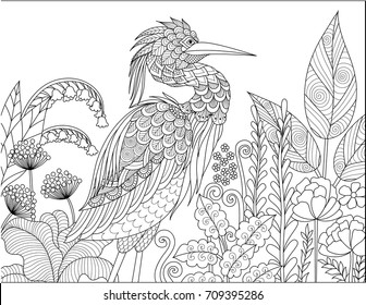 Gray Heron bird in the forest for adult coloring book page. Vector illustration