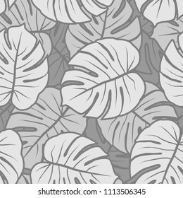 gray monochrome monstera leaves graphic exotic seamless pattern