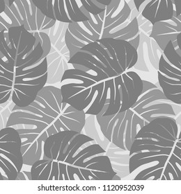 gray monochrome monstera leaves graphic exotic seamless pattern on light background