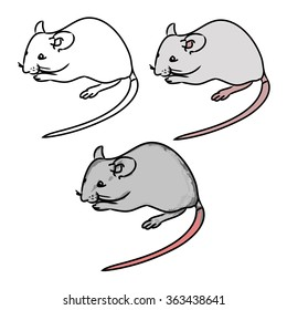 The gray mouse and its contours