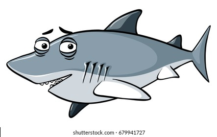 Gray shark with sleepy eyes illustration