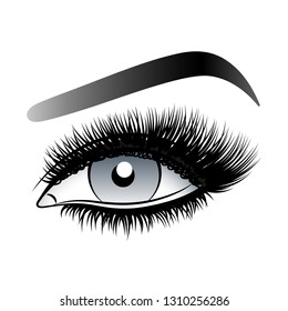 Gray woman eye with long false lashes with eyebrows.