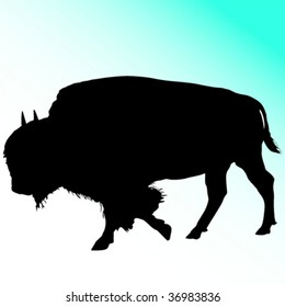 Great bison silhouette