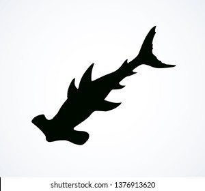 Great bonnethead Sphyrna mokarran on white backdrop. Dark ink hand drawn picture logo emblem pictogram in art retro contour etching print style. View closeup with space for text