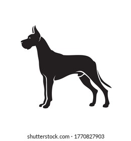 Great Dane dog - isolated vector illustration