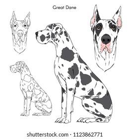 Great Dane illustration, dog breeds