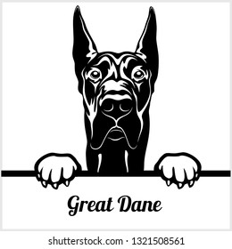 Great Dane - Peeking Dogs - breed face head isolated on white - vector stock