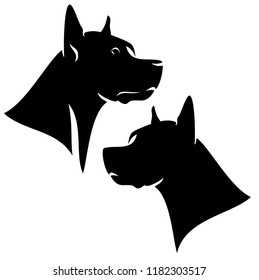 great dane profile head black silhouette - dog vector portrait