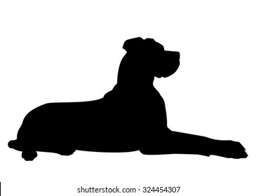 Great Dane purebred dog lying on the floor - vector silhouette isolated