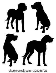 Great Dane purebred dogs standing and sitting vector silhouettes isolated