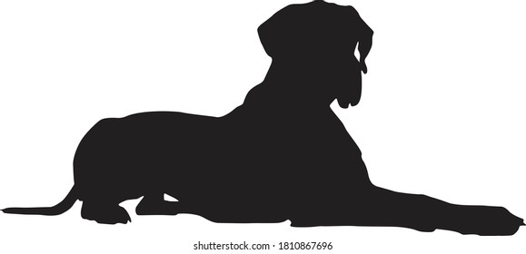 Great Danes Dog Sitting On Side Silhouette Found In Map Of Europe