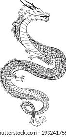 great dragon ilustration drawing vector