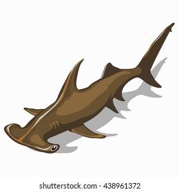 Great Hammerhead Shark isolated on white background. Vector illustration.