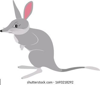 Сute greater bilby icon cartoon vector design. Rabbit eared bandicoot hand drawn illustration isolated on white background. Happy aussie Easter. Endangered australian animal