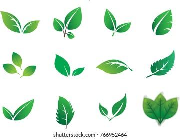 Green abstract leaf icons natural set on white background (Vector illustration)