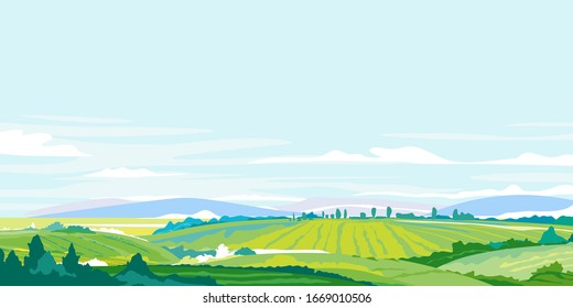 Green agricultural fields, hills and meadows, summer countryside with green hills, rural landscape, agricultural land with crops and vineyards in simple colors with blue sky