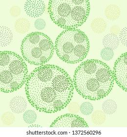 Green algae volvox vector