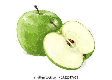 Green apple with half isolated on white background. Vector illustration