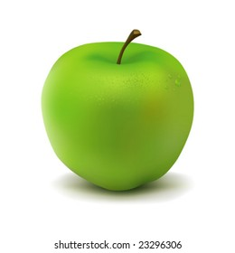 Green apple illustration in vector