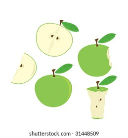 Green apples isolated - vector
