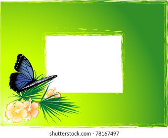 Green background with the blue butterfly