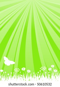 Green background with flowers, rays and a butterfly. Vector illustration.