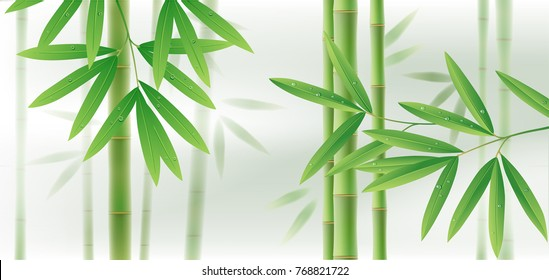Green bamboo horizontal background with stems and leaves on white. Vector illustration