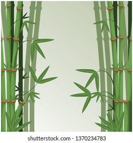 Green bamboo japanese.vector