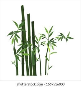green bamboo plants simple vector design