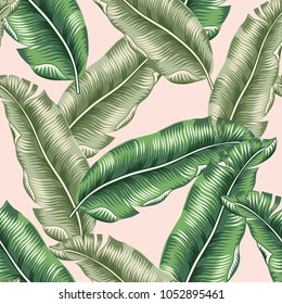 Green banana palm leaves on the blush pink background. Vector floral seamless pattern. Tropical jungle foliage illustration. Exotic plants. Summer beach design. Paradise nature.