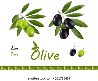 Green and black olives in one set and a logo for olive oil.