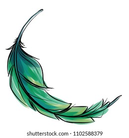 Green blue Feather vector