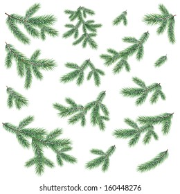 Green branches of a Christmas tree, set, isolated on white background. Vector