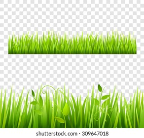 Green and bright grass border tileable transparent with plants flat isolated  vector illustration