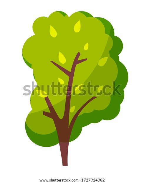 Green bright tree with a lush crown, thick brown trunk and branches isolated on white background. Flat vector illustration of big plant with foliage round shape, landscape element in cartoon concept