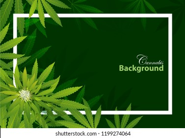 green cannabis leaf drug marijuana herb Background. Vector Marijuana Frame Cannabis Green Leaf.