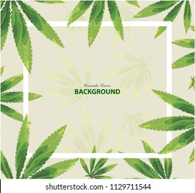 green cannabis leaves motion on white background. Can be used for poster, label or card design isolated vector illustration.