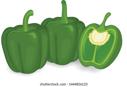 Green capsicum ( bell pepper) with half piece of capsicum vector illustration