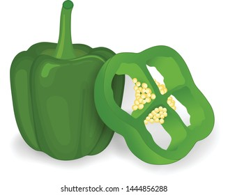 green capsicum with piece of green capsicum vector illustration