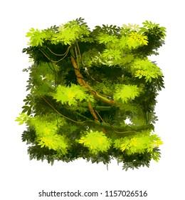 Green cartoon lush tropical bush isolated on white