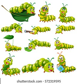 Green caterpillar character in different actions illustration
